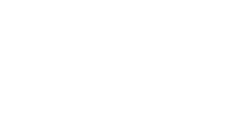 Crossing Borders icon
